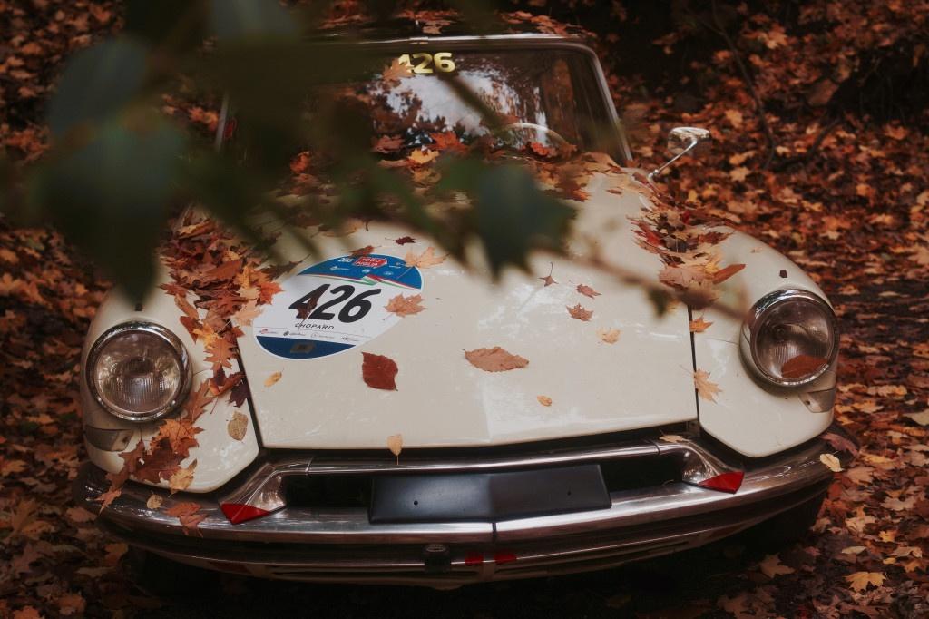 old-car-dry-leaves