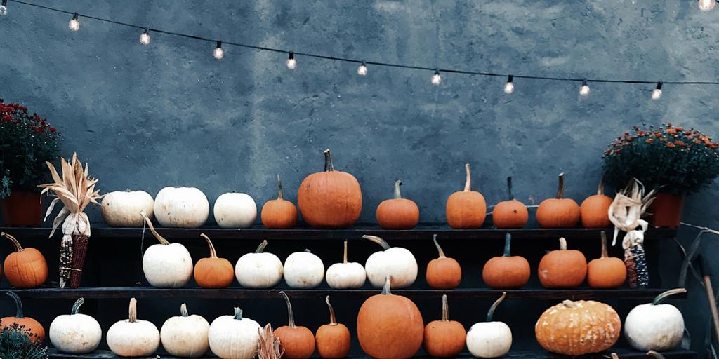 pumpkin-shelves