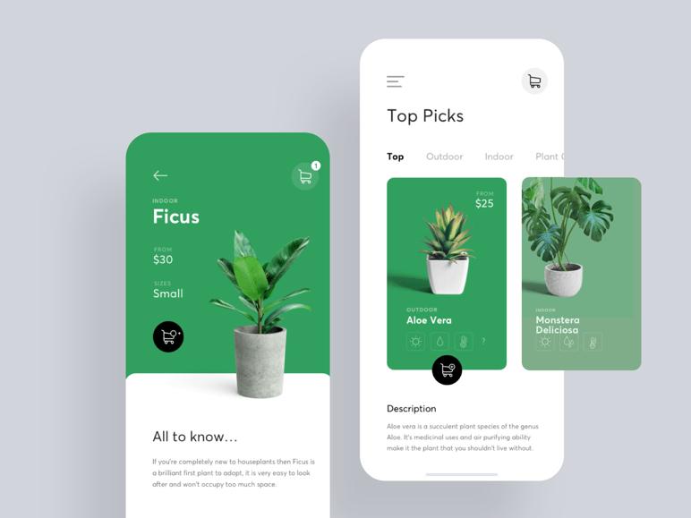Diseño app móvil para tienda de plantas