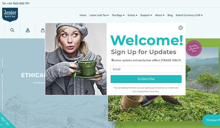 Cómo diseñar tu tienda online en BigCommerce